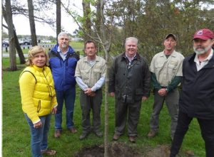 arbor-day tree planting 2016 Photo includes Town employees, tree committee members, Mayor David Lyons and Town Manager Thomas Roth