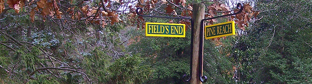 image_51 - New Street Signs 2010
